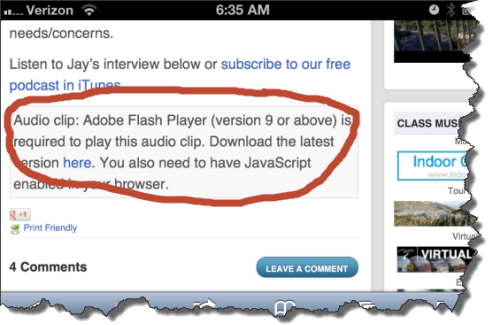 ... but Safari doesn't support Flash... so now what?