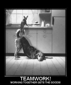 team work (3)