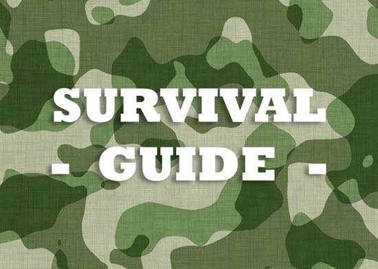 Sugar Survival_Guide