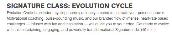 Evolution Cycle Descripton