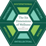 Bring Some Extra Dimensions to Your Next Class