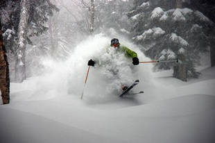 how-to-ski-powder